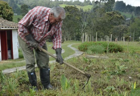 Avanza trabajo de la Mesa Técnica de agricultura familiar