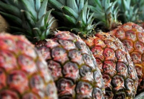 Colombia lograría admisibilidad de seis productos a Ecuador