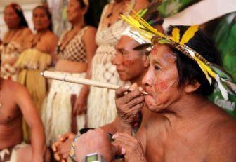 Lanzan planpara potenciar comunidades indígenas y sus productos
