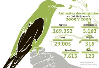 Fauna amenazada