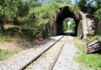 Los rieles no se paralizan porque no haya ferrocarril