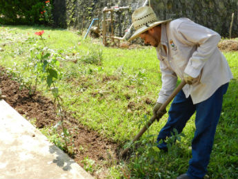 Trabajo dom stico un oficio precarizado for Trabajo jardinero