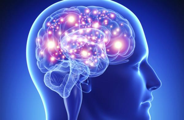 Resultado de imagen para neurosensores del cerebro