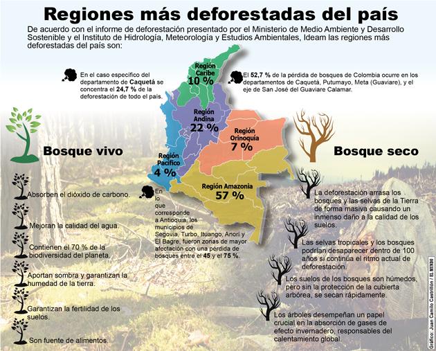 En colombia preocupan las altas cifras por deforestaci n for 4 usos del suelo en colombia
