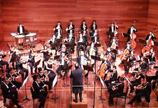 Año Colombia-Francia abrirá con la Orquesta Sinfónica Nacional