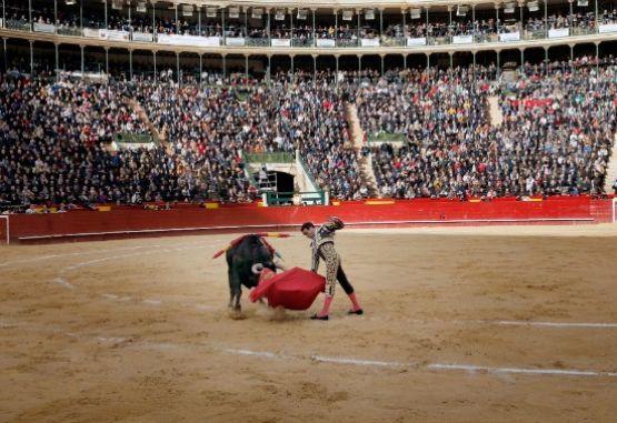 El requisito que le pondría fin a las corridas de toros en ...