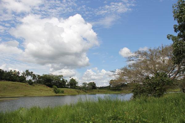 Paisaje Bajo Cauca