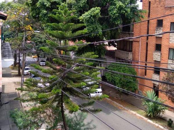 calle spitaletta